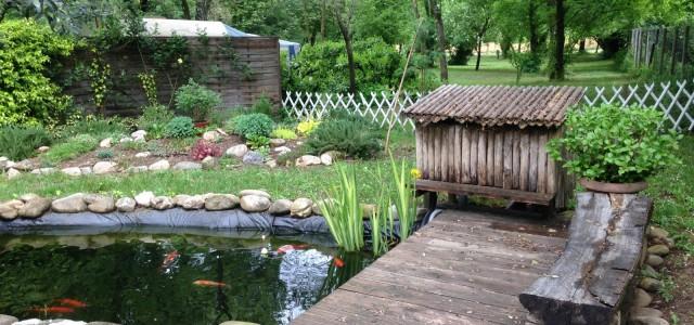 le jardin zen et ses carpes