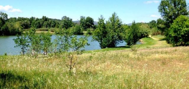 le lac au pied du camping